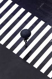 Картинки по запросу minimal photography