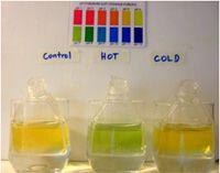 CarboSchools - Experiments for Teaching Climate Change - Experiments about ocean acidification - vía Fatima Miro Estruch