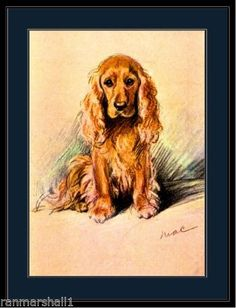 English-Picture-Print-Golden-Cocker-Spaniel-Dog-Art