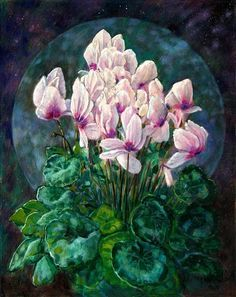 Image result for Charles Rennie Mackintosh cyklamen