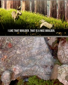 i like that boulder too donkey it's a very nice boulder