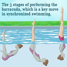 Beginner's Guide to Synchronized Swimming