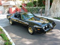 My little brother had this ride and big sister used to borrow it all the time.  :) 1981 Turbo Trans Am with T-tops.