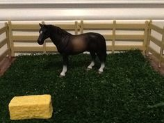 This is the 2009 Hanaverion stallion.