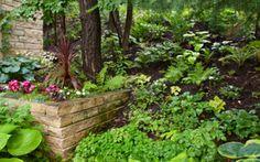 Shade Garden Design Ideas