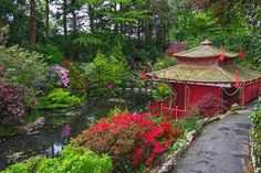 PDX boasts the most authentic & largest Japanese garden outside Japan: though the wide variety of plants, sculptures, & rock gardens make the garden gorgeous yr-round, nothing beats seeing the cherry blossoms in spring