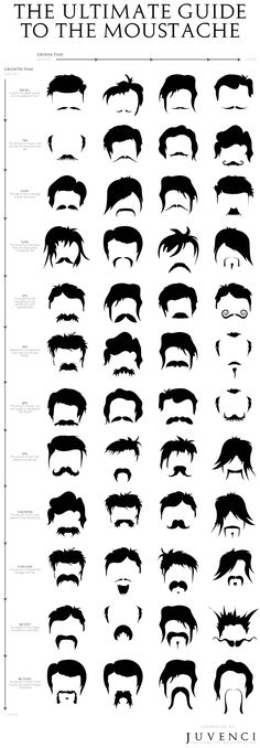 The Ultimate Guide to The Moustache #infographic #LifeStyle #Mustaches