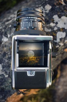 gstephen137:    definitelydope:    through a hasselblad's eyes (by manyfires)    I want to see one of these someday.