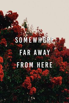 Somewhere far away from here. Continue reading…
