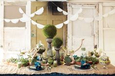 Succulent Table Decoration via Ruffled blog.  I love all the textures and interest happening on this table.