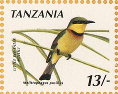 Little Bee-eater stamps - mainly images - gallery format