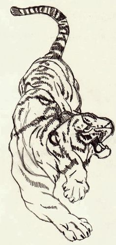 I have always wanted to draw a tiger drawling this welly and beautifully.