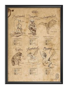 Fantastic Beasts And Where To Find Them Printable Beasts Sketchbook inch You can have the poster with other size! Fantastic Beasts And Where, Anatomy Art, Vintage World Maps, Harry Potter, Sketch, Printables, Magic, Poster, Kunst