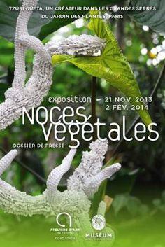 Noces Végétales, l'exposition de Tzuri Gueta au Jardin des Plantes