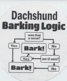 In addition to wearing awesome costumes, Dachsunds are smart enough to wireframe their barking logic