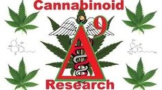 cannabinoids documentary - YouTube