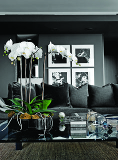 LOVE this dramatic black and white room! Interior Design by Cathy Echols via www.ladolcevitablog.com
