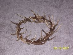 Deer Antler Wreath. $30.00, via Etsy.