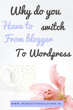 This is why you have to switch from blogger to Wordpress. These tips are for beginners, for business and also totally free! The plugins and widgets are an huge advantage from switching from blogger to Wordpress. Check it out now!