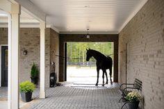 Aiken stable