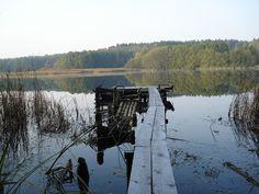 Kładka na jeziorze w lesie (okolice Nakielna)