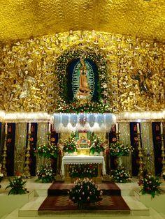 Festividad de la Sma. Virgen de Guadalupe. Diciembre 12, 2014