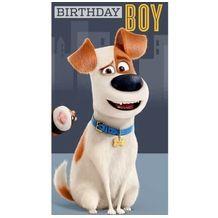 Secret Life of Pets Birthday Boy Card