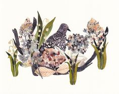 Mourning Dove Hydrangeas and Snow Drops, Illustration and design by Michelle Morin Mourning Dove, Beautiful Artwork, Watercolor Paintings, Painting Art, Illustration Art, Images, Drawings, Prints, Hydrangeas