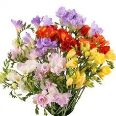 Special Flowers, Ikebana, Beautiful Roses, Bonsai, Floral Wreath, Wreaths, Plants, Gardens, Facebook