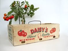 Vintage Cardboard Tomato Carrier Box Basket Produce Vegetable Storage Container…