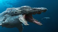 Sea Monsters Scarier Than Megalodon Scary Sea Creatures, Deep Sea Creatures, Fantasy Creatures, Mythical Creatures, Shark Pictures, Ocean Pictures, Shark Pics, Extinct Animals, Prehistoric Animals