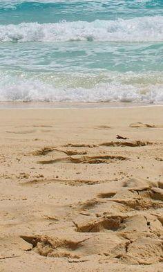 #Cancun #Beach #treasuredtravel