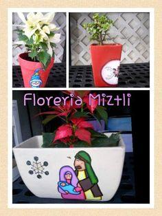 La navidad esta llegando ya a #FloreriaMiztli con detalles únicos y super especiales  para esta época! #FelizMartes