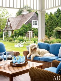 The lovable Jerry enjoys the sitting area on the rear porch of his East Hampton, New York, home