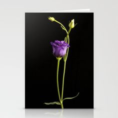 lisianthus Stationery Cards by F Photography and Digital Art - $12.00