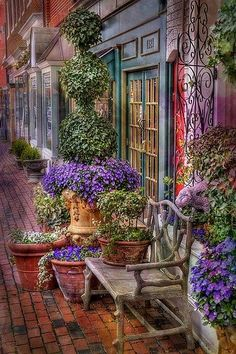 Brick sidewalk and inviting store fronts w/ flowers