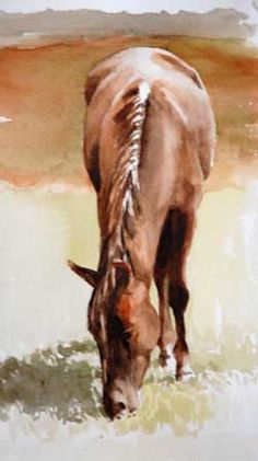 lovely watercolor horse
