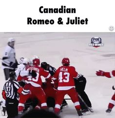 Except these two teams aren't Canadian. It's the Red Wings and Kings. Maybe the players are. Still very funny though!