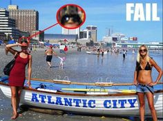 Check out all our Sunglasses Fail funny pictures here on our site. We update our Sunglasses Fail funny pictures daily! Funny Baby Images, Funny Pictures For Kids, Funny Animal Pictures, Funny Kids, Fail Pictures, American Funny Videos, Funny Dog Videos, Humor Videos, Justin Bieber Jokes