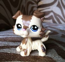 ✿LITTLEST PET SHOP✿#2210✿BROWN AND CREAM COLLIE✿BLUE EYES✿RARE✿