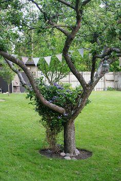 Lindas trädgårdsblogg   trädgård - trädgårdsprojekt - trädgårdsdesign