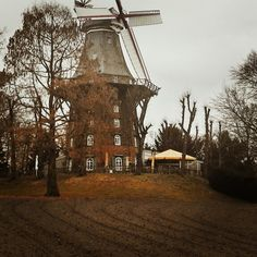 #windmill turned restaurant