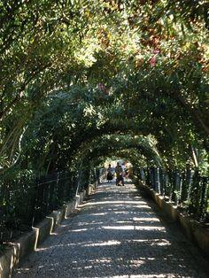 Generalife, Alhambra, Granada, Spain
