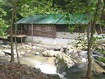 *Creekside* is a vintage 1930s one bedroom, one bath round log cabin sitting right on the edge of rushing Cove Creek. You will immediately fall in love with the cabin and the creek setting. Surrounded by hardwood trees, hemlocks and evergreens, it is hard to imagine a more peaceful setting only four miles from the parkway in Pigeon Forge.