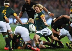 Faf de Klerk box-kicks for South Africa against New Zealand World Cup Champions, Rugby World Cup, Rugby Memes, South African Rugby, African History, New Zealand, Kicks, Animal, Sport