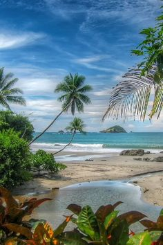 Little tropical lagoon painting idea at the beach. Tropical paradise!