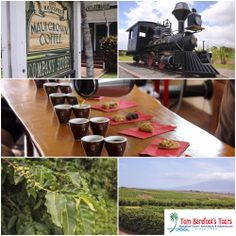 If you like the idea of combining Maui and Coffee together while you're on the island, you should really look into this trip with Maui Country Farm Tours! http://www.tombarefoot.com/info/Learning_About_Coffee_with_Maui_Country_Farm_Tours.html