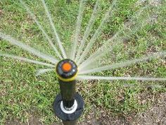 I love the nozzle on this Rainbird sprinkler head.