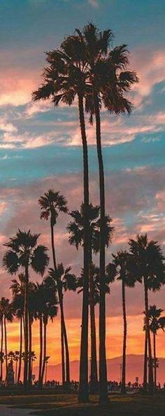 Venice Beach, Los Angeles, California  Customized skincare made in California by roseandabbot.com