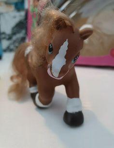 Cappuccino the pony